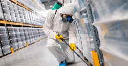 Why Third Party Audited Facilities Need Pest Management Image